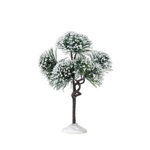 mountain pine-pino-74175-lemax
