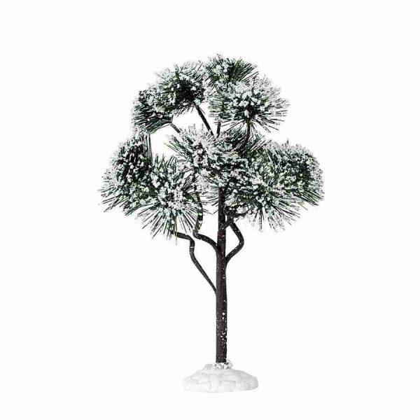 mountain pine-pino-grande-74174-lemax