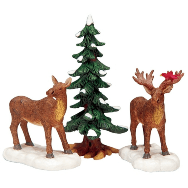 mr. and mrs. moose 32725 lemax
